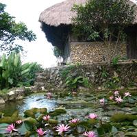 Main image - Farm & Garden